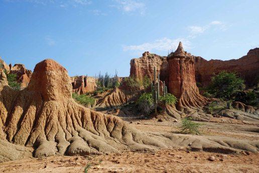 7 desertscape shapes sm