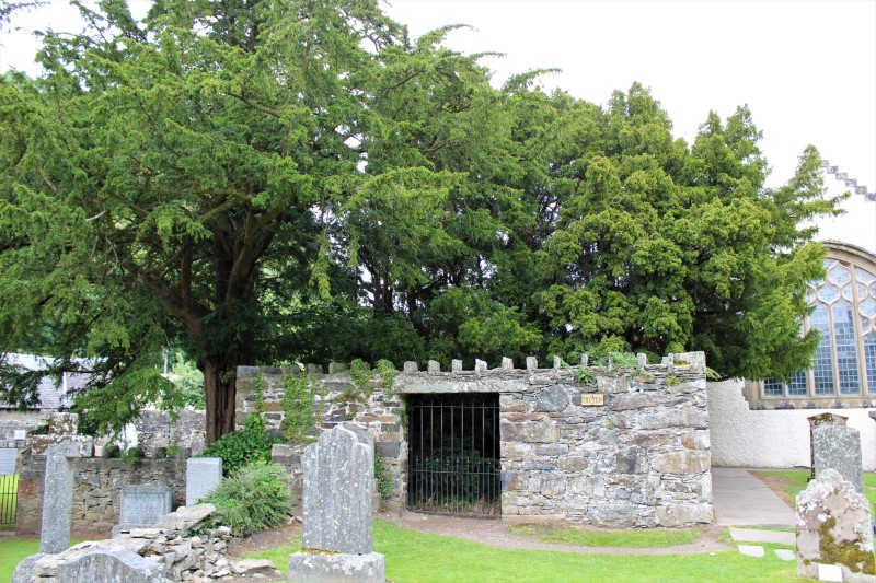 Il tasso di Fortingall e la strada per inverness