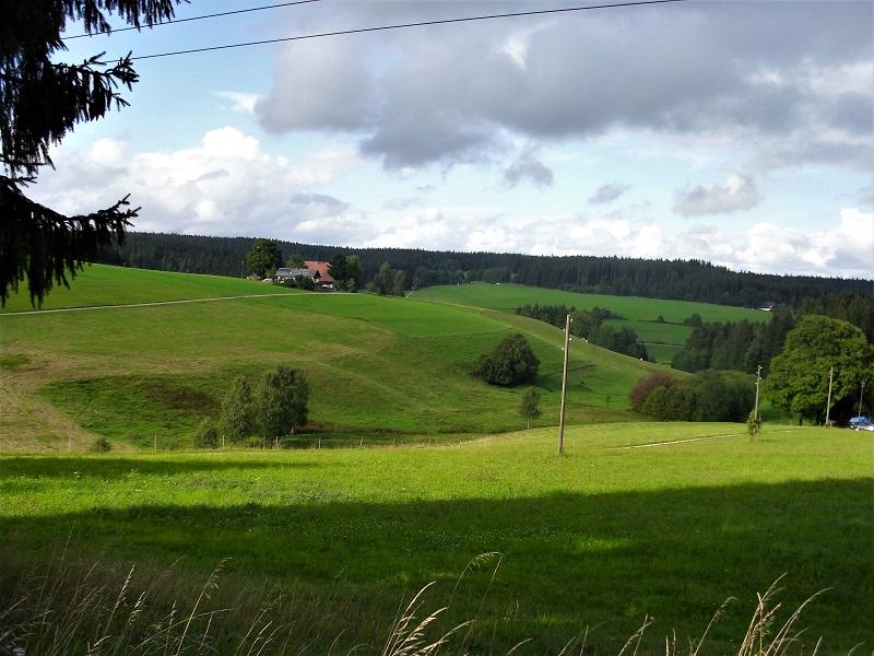 Tappa6-Titisee-SanktGeorgen - Strada-tra-villingen-e-sankt-georgen.jpg