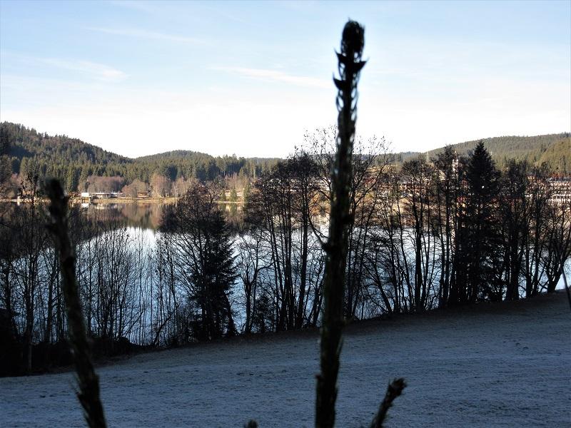 Il lago Titisee d'inverno