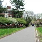 Boston - Boston-Harvard-Campus-9-Media.jpg