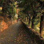 Vercurago - Santuario-San-Girolamo-discesa-2.jpg
