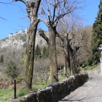 Vercurago - Santuario-San-Girolamo-salita-2.jpg