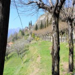 Vercurago - Santuario-San-Girolamo-salita-3.jpg