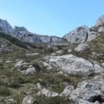 Monte-Alben - Monte-Alben-sentiero-salita-3.jpg