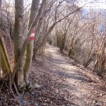 Pizzo-Formico - Pizzo-Formico-sentiero.jpg