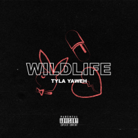 "Post Malone Co-Sign Tyla Yaweh Releases New Track ""Wildlife"" [Audio]"
