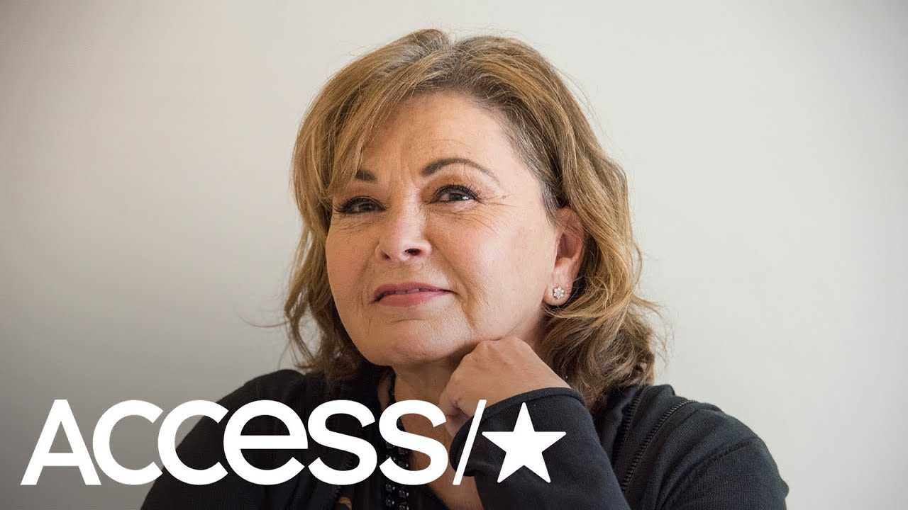Roseanne Barr Reveals She's Been Offered An Opportunity To Return To TV: 'I Might Do It' | Access