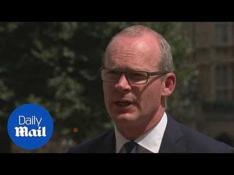 Simon Coveney says unionists have 'nothing to fear' from BIIGC - Daily Mail