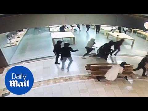 Thieves steal $29K worth of merchandise from Apple store - Daily Mail
