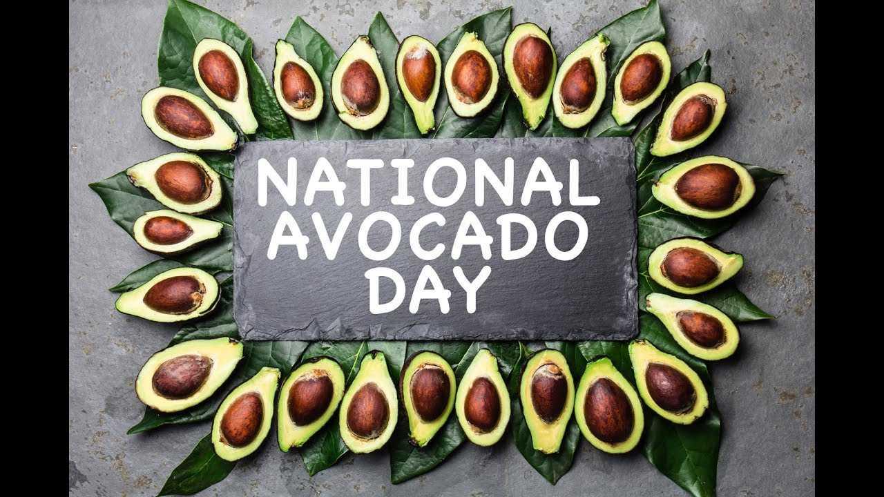 Happy National Avocado Day!! - Hollywood TV