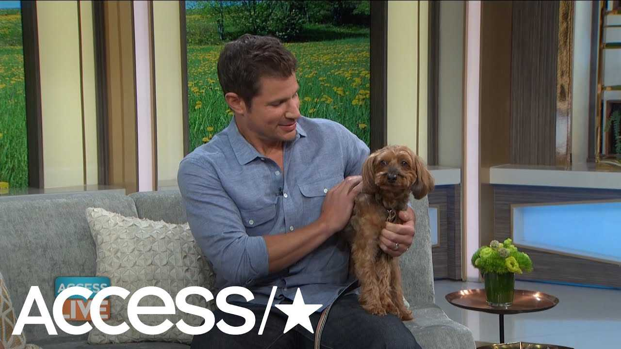 Nick Lachey Reveals Who His 'First Born' Is & It's Not One Of His Kids
