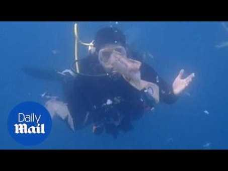 Moment scuba diver swims through sea of plastic pollution