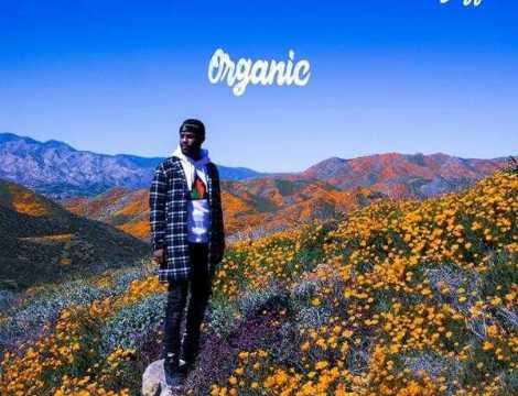 New Project: Casey Veggies - Organic [Audio]