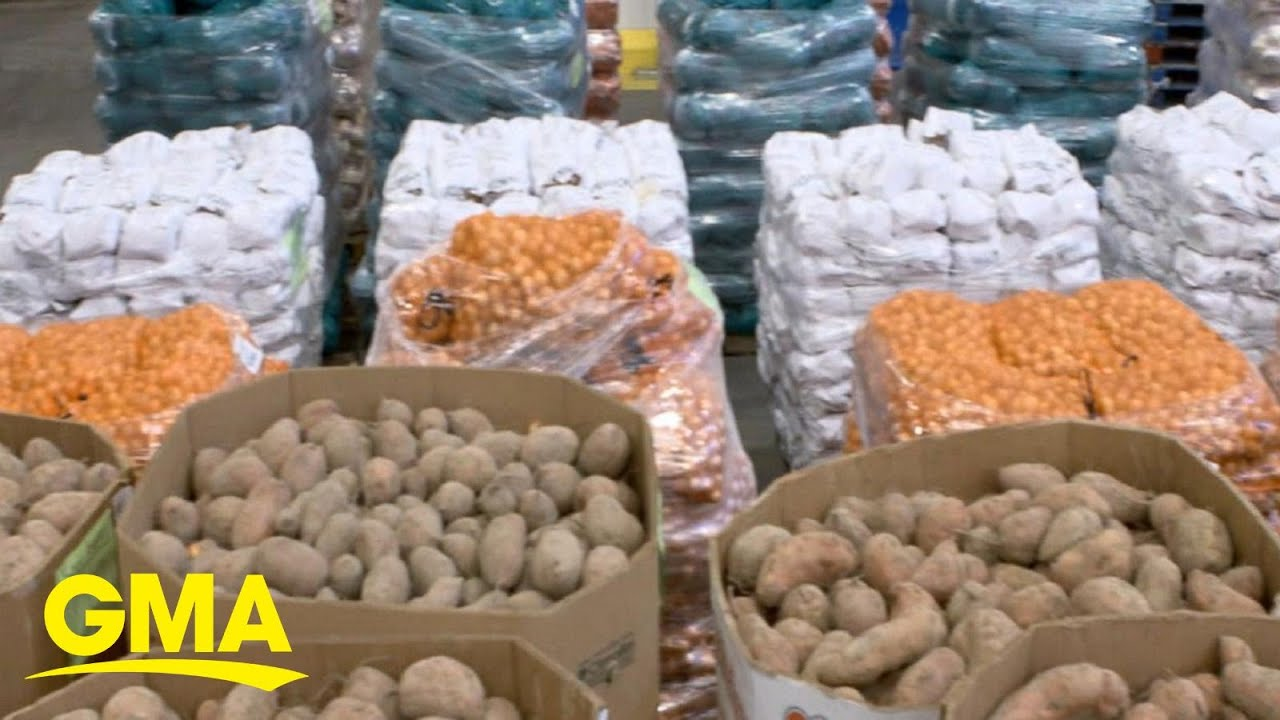 Families fighting hunger during the pandemic