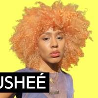 "Fousheé ""Deep End"" Official Lyrics & Meaning | Verified"