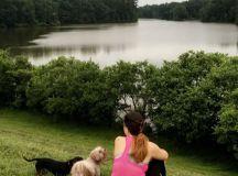 Run Around Lake Lynn, Raleigh   Offline