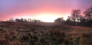 Frosty field landscape with a bright white, orange, pink, and purple sunset sky above..