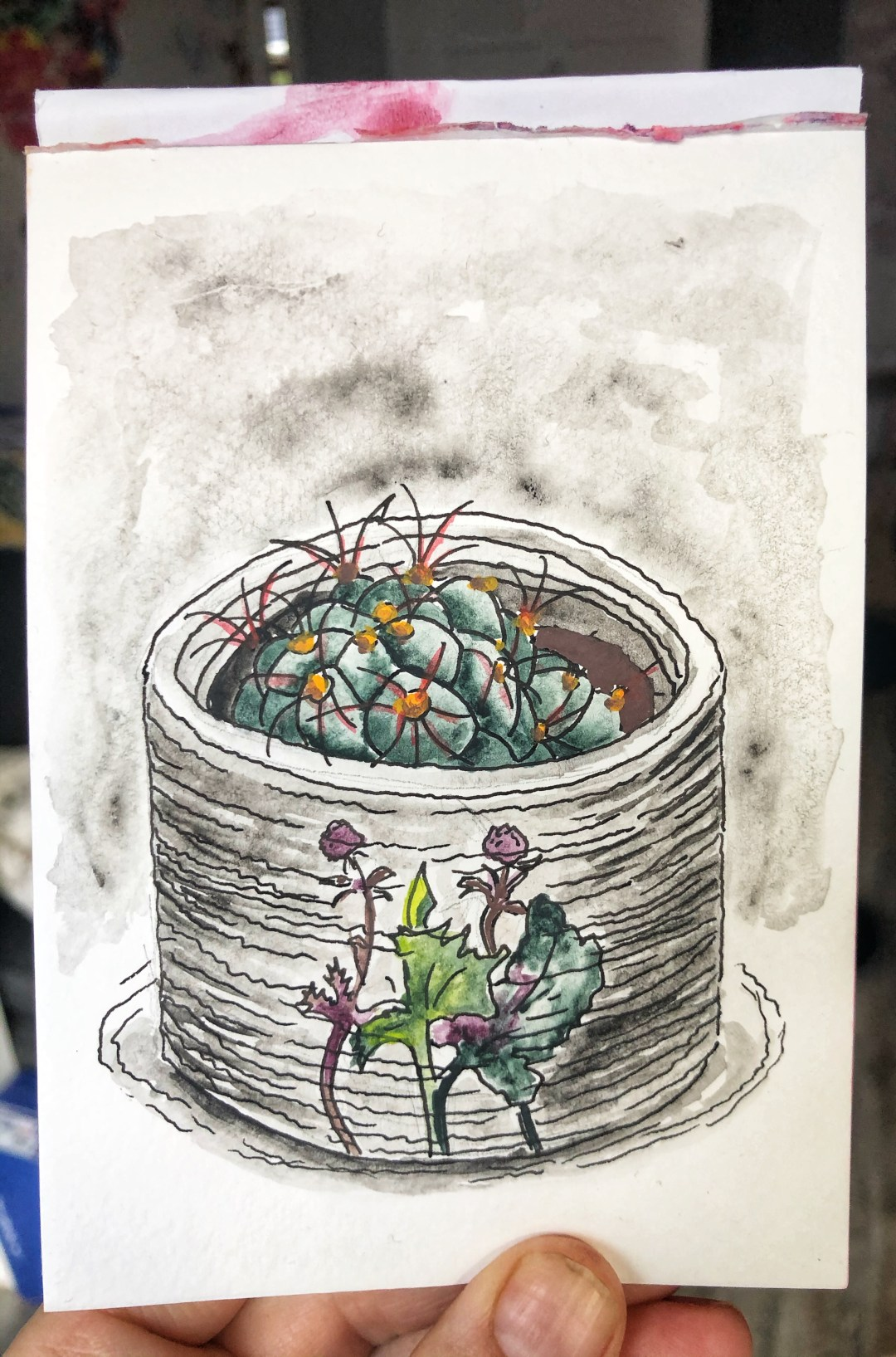 Cactus in a pot. Illustration.