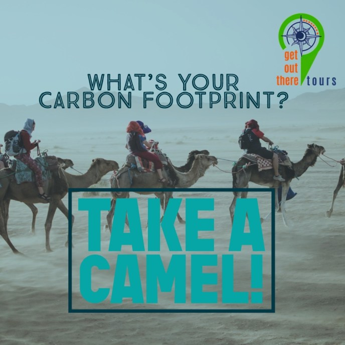 Carbon-Footprint-About-Us-Get-Out-There-Tours-Camel