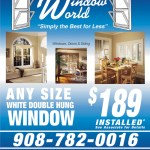 Design used for poster and reformatted for flyer created for Window World of Central NJ