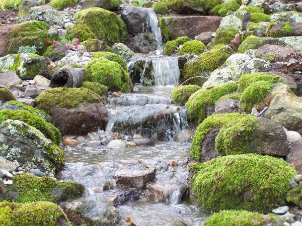 pondless waterfall - sweetwater
