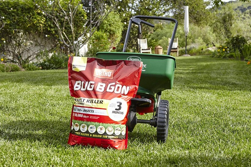 Always keep your garden healthy with give periodically fertilizer. This is the best way to prevent any pests to harm your plants.