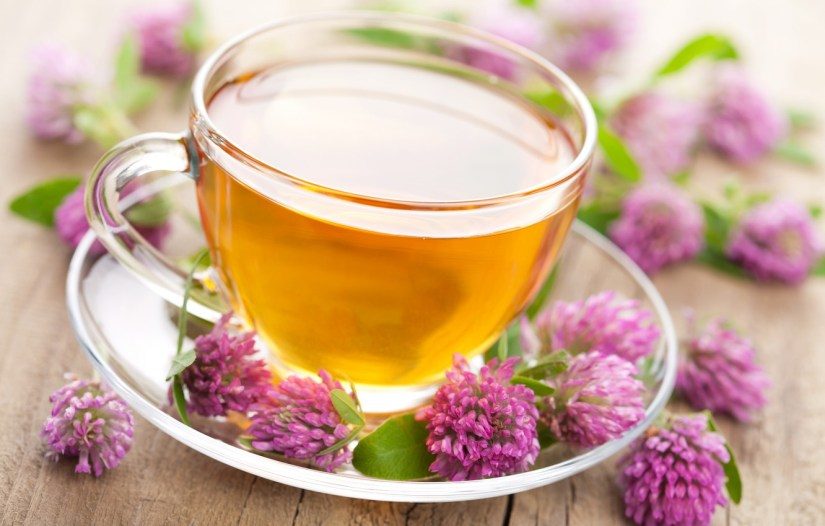 One study found that menopausal women taking red clover supplements had stronger, more flexible arteries (called arterial compliance), which can help prevent heart disease. Red clover may also have blood-thinning properties, which keeps blood clots from forming. It appears to improve blood flow.