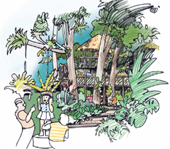 selby-gardens-illustration3