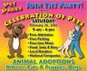 celebration-pets