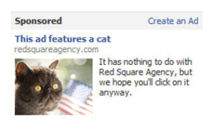 This-ad-features-a-cat-Liquid-Lock-300x186 10 Things Healthcare Marketers Get Wrong With Facebook Ads