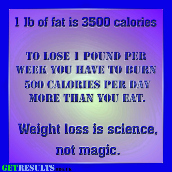 Get Results: 500 calories for web