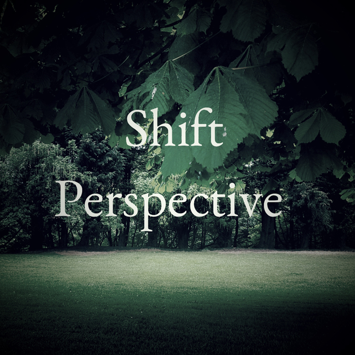 Get Results: shift perspective