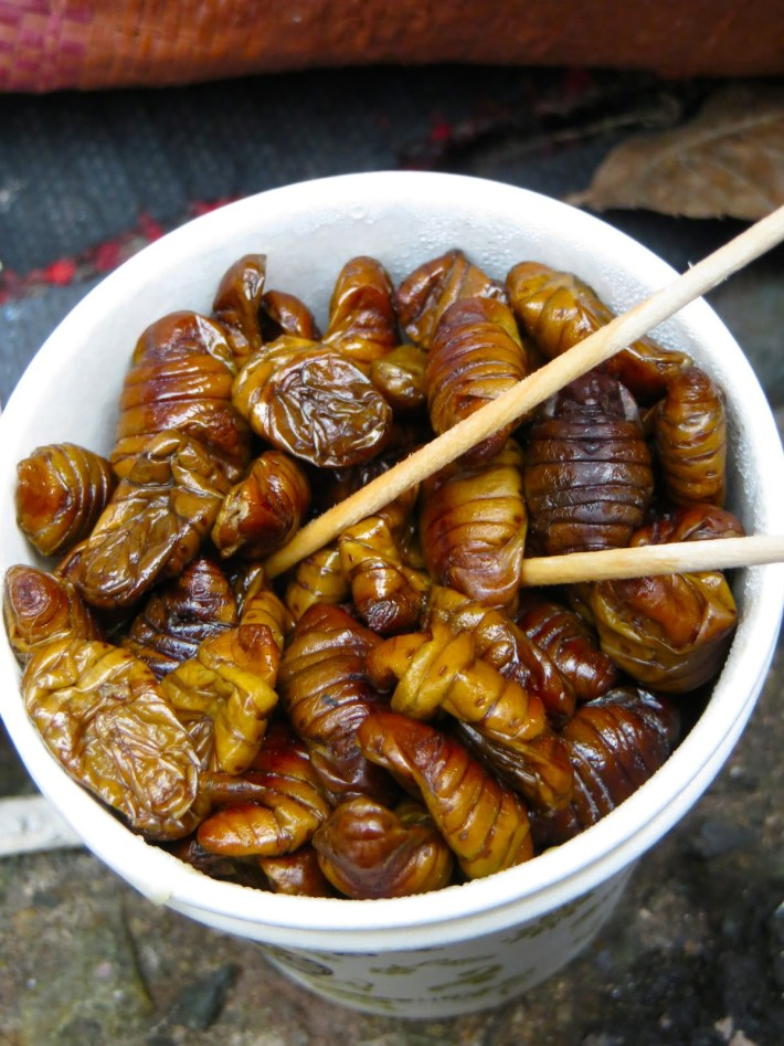 Bizarre Meals People Love to Eat | Beondegi - South Korea | Boiled or Steamed Silkworm Pupae