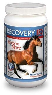 Recovery EQ Powder, 2.2 lbs (1 Kg, 40 Days)