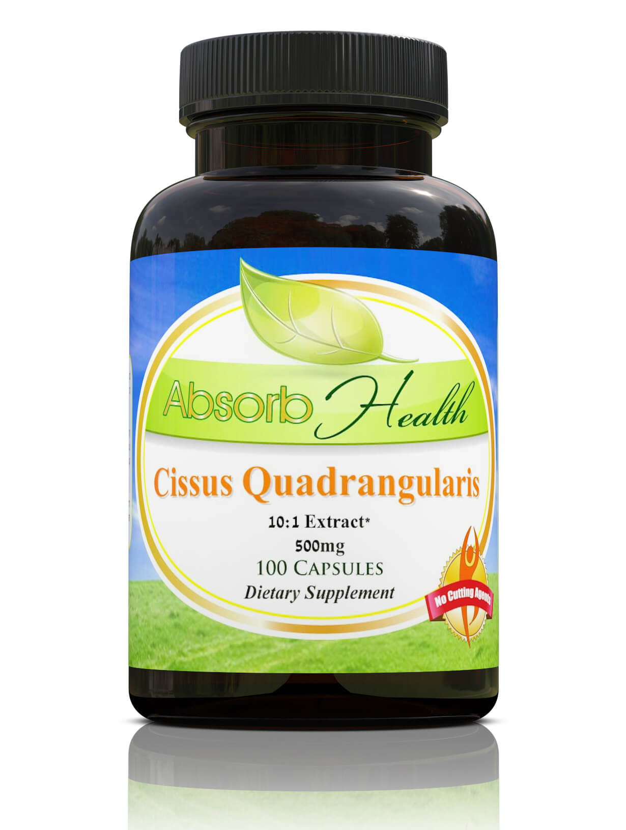 Is Cissus Quadrangularis Beneficial for Your Health?