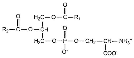 phosphatidylserine sleep