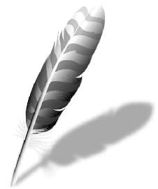 Wing Pro Crack