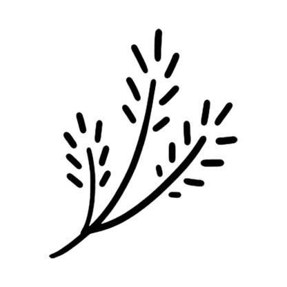 small branch