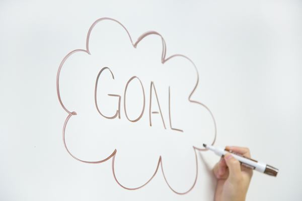 goal settgin