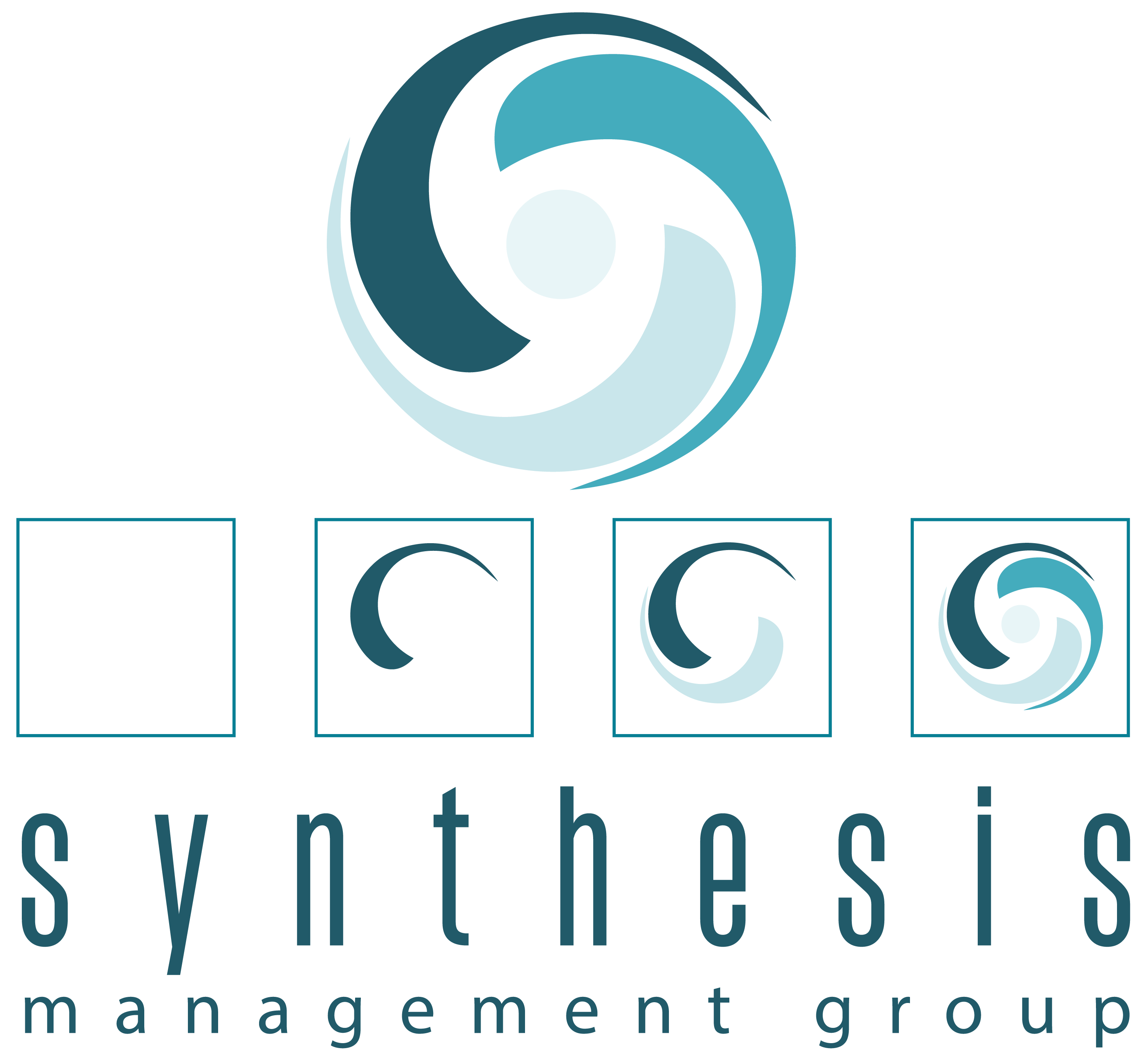 Synthesis Management Group
