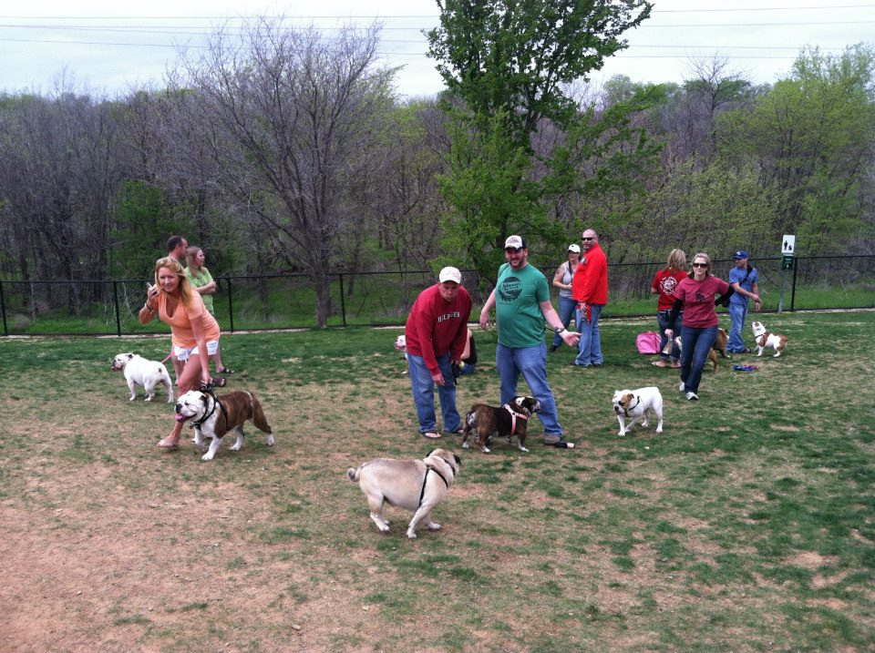 Frisco Dog Park is a great place to meet friends in fort worth