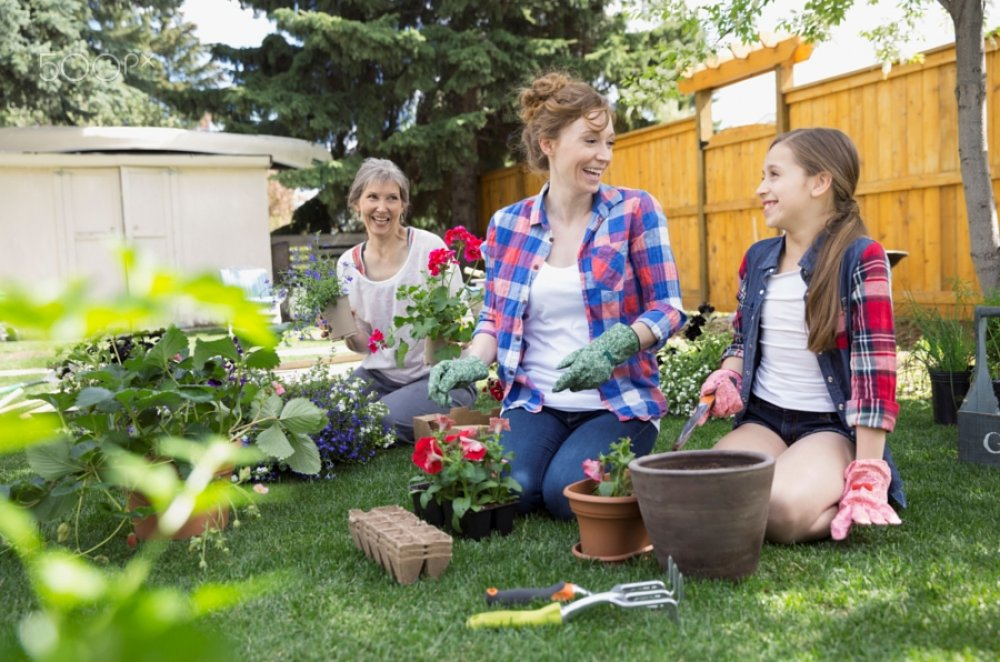 Joining A Garden Club Can Give You New Friends In Lexington