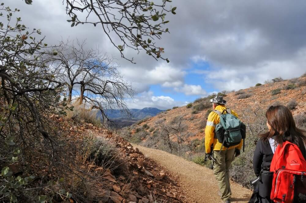 Go For Hiking With Others In Glendale And Make Friends