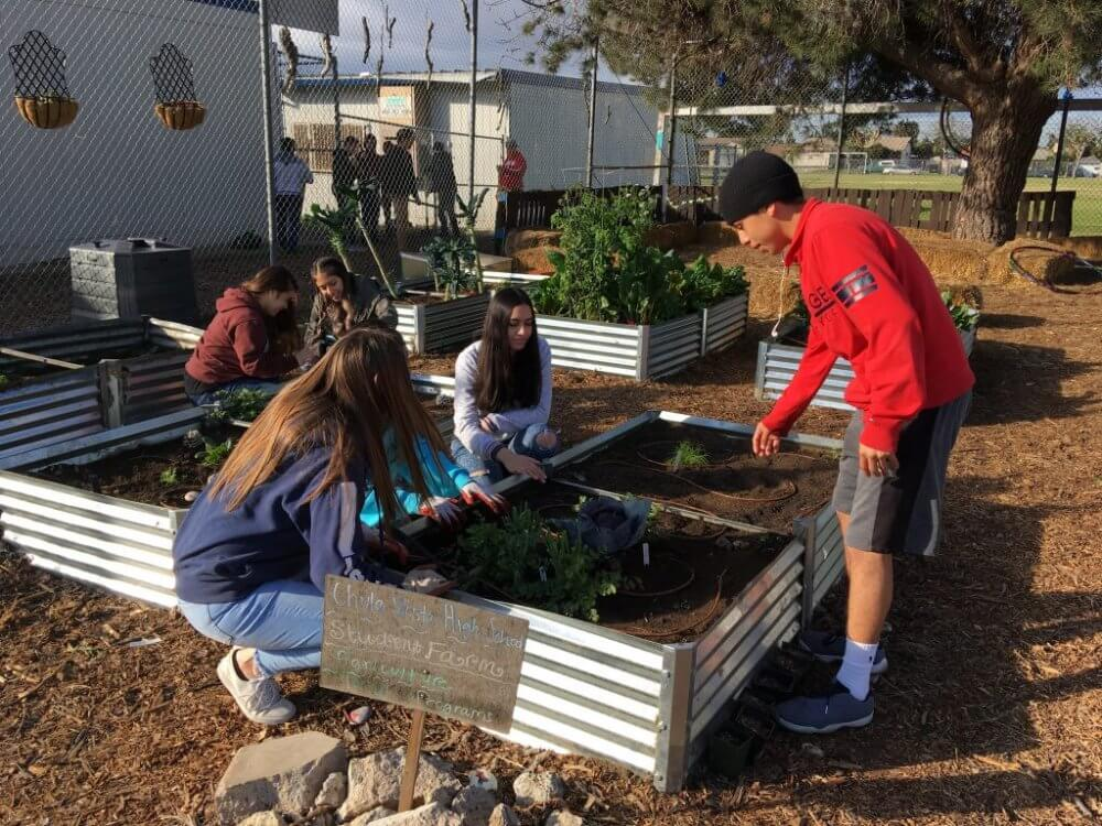 Join In Gardening Clubs In Chula Vista And Make New Friends