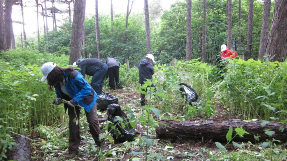Join With Nature Conservation Group In Liverpool And Make New Friends