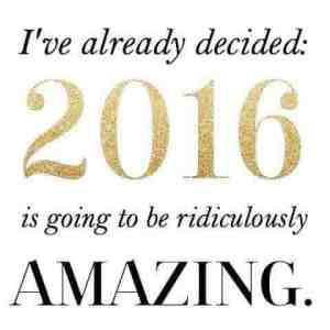 2016 Goals Check In