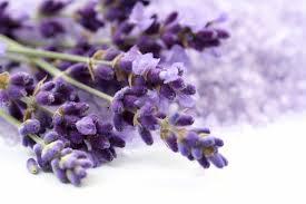 8 Popular Flowers for Healing