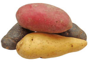 Purple Potatoes | Health Benefits of Potatoes