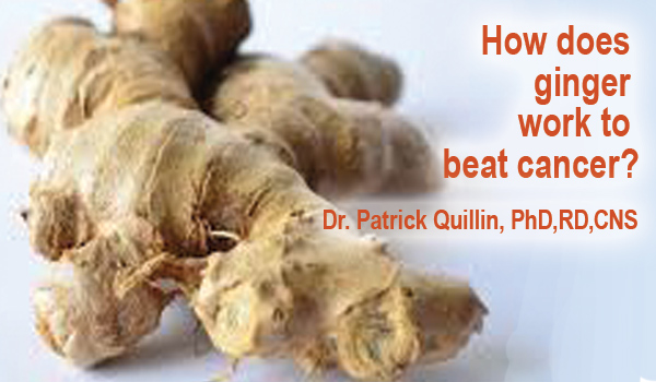 How does ginger work to beat cancer?